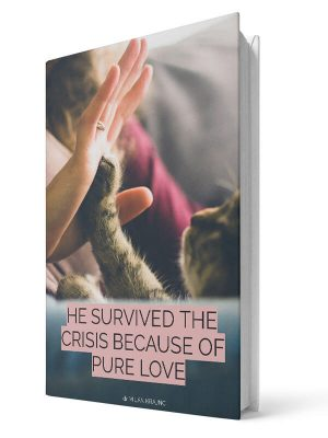 He survived the crisis because of pure love | E-book - Milan Krajnc ; Personal and Business Coach