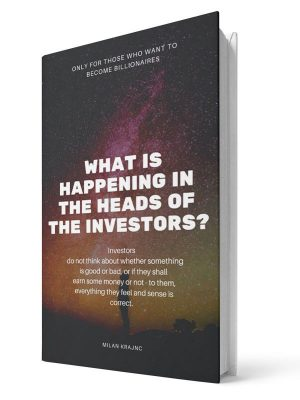 What is happening in the heads of the investors - Milan Krajnc - E-book - English